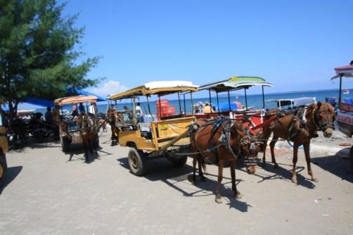 courtesy of exploreindonesia-nusantara.blogspot.com