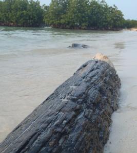 pulau tidung kecil